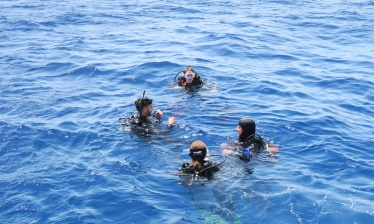 Open Water Diver PADI Courses