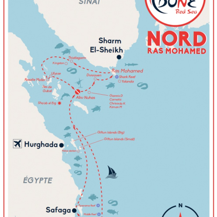 Croisière Nord - Ras Mohamed - Tiran