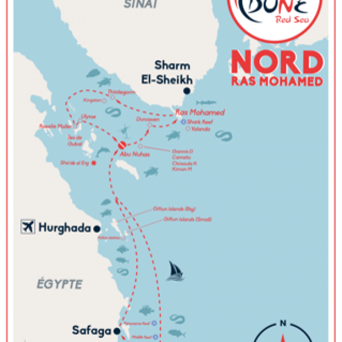 EGYPTE - Itinéraire  Nord  Ras Mohamed
